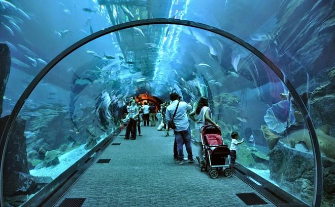 The Aquarium in Suoi Tien Theme Park